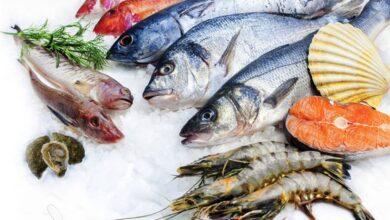 صورة اسعار السمك اليوم..